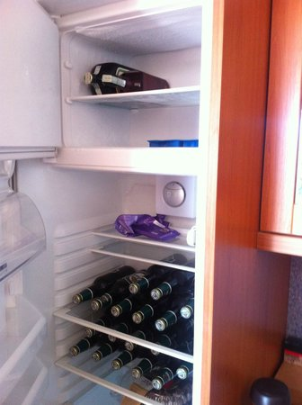 Aparthotel City 5 : Fridge in apartment - plenty of room for beer