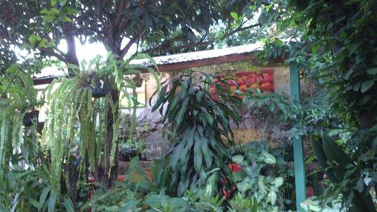 Sabe Rico: Los jardínes