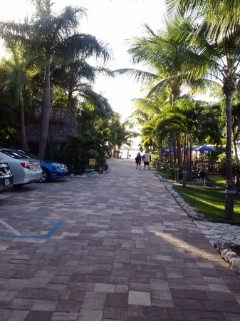 Island Bay Resort: view down the lane towards the beach