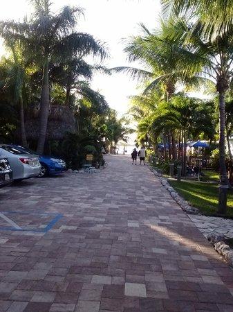Island Bay Resort : view down the lane towards the beach