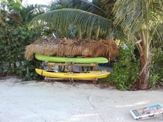 Island Bay Resort: Kayaks