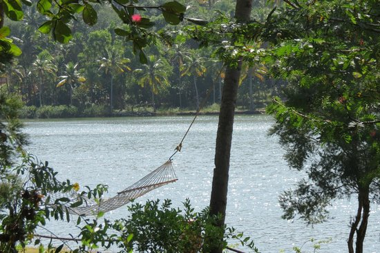 Fragrant Nature Backwater Resort & Ayurveda Spa: view from the room
