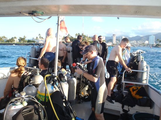 Dive Oahu: a litte crowded, but great crew