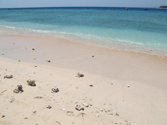 Dream Village : the beach