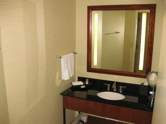 Hyatt Regency Houston: RM 2116 - King Room (off the Atrium)