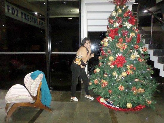 Foz Presidente Hotel: era mes de  navidad y ahi salgo en su gran arbol
