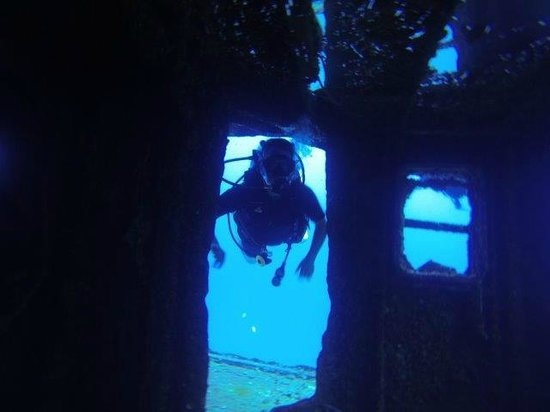 Oahu Diving: Searching a wreck
