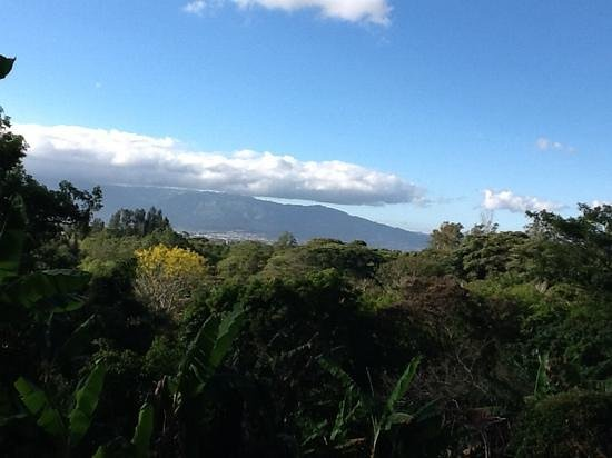 Finca Rosa Blanca Coffee Plantation Resort: view from our deck