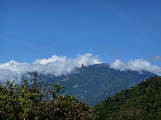 Boquete Tree Trek : Volando....