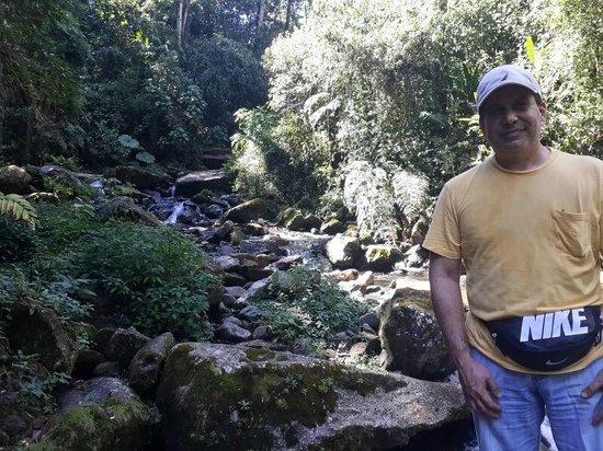 Sendero Los Quetzales (The Quetzales Trail): Rios en el camino
