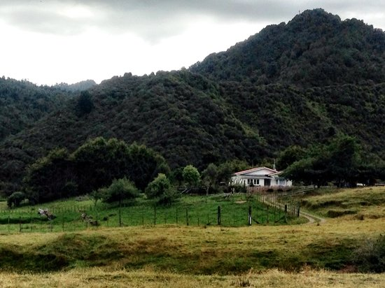 Motu Road : Travelling back in time...Toatoa farmstay was brilliant!