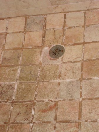 Veneto Hotel & Casino : The shower tiles were filthy