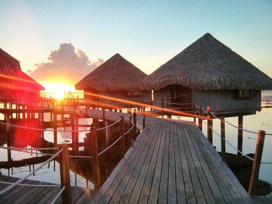 Le Meridien Tahiti : Bungalows