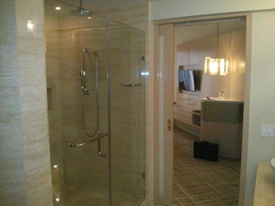 Waldorf Astoria Panama: Spacious shower