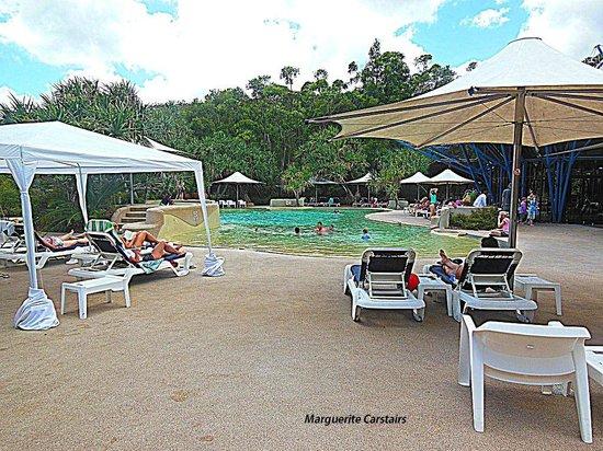 Kingfisher Bay Resort: Pool area