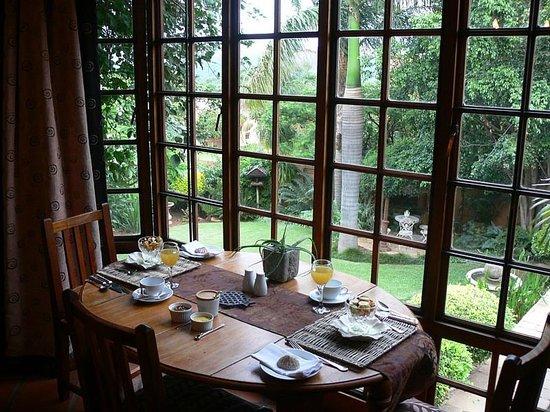Terra Casa: Breakfast with Rear Yard view