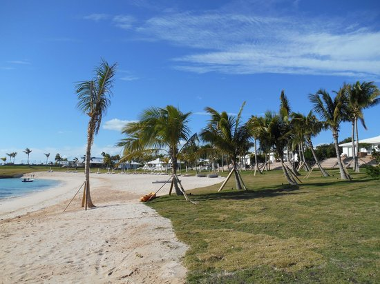 The Cove Eleuthera: The beach/grounds