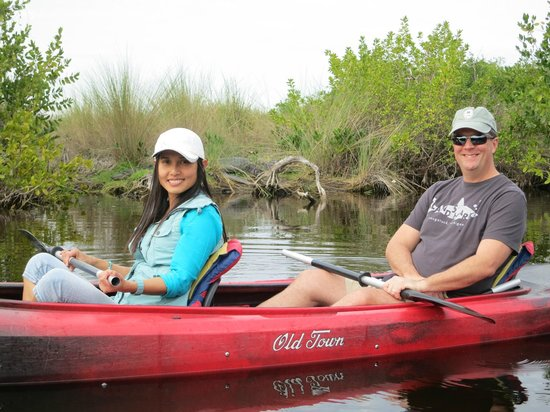 Tour the Glades: Alligator napping zone.