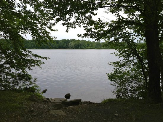 Otter Lake Camp Resort: Lake front site