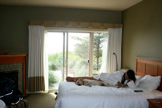 Long Beach Lodge Resort: pet friendly ground floor