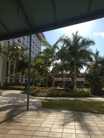 Miami Airport Marriott: looking at pool and Marriott