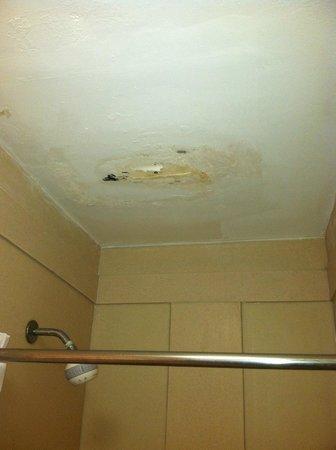 Days Inn Savannah -  Abercorn Southside: Bathroom Ceiling