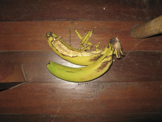 Shwe Inn Tha Floating Resort : the fruit in our room that the rats ate