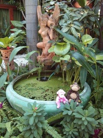 Ruenkanok Thai House : Water feature