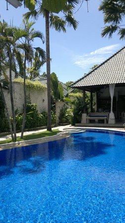 Artemis Villa and Hotel: Pool side