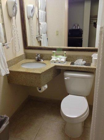 Holiday Inn Express Miami-Hialeah (Miami Lakes): Baño