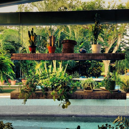 Los Arroyos Verdes : Garden and pool area