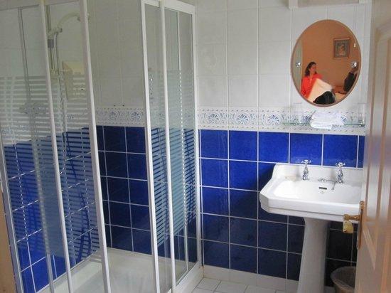 Adare Country House: bathroom