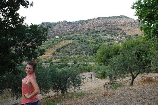 Al Poggetto : Caroline  view of the orchards