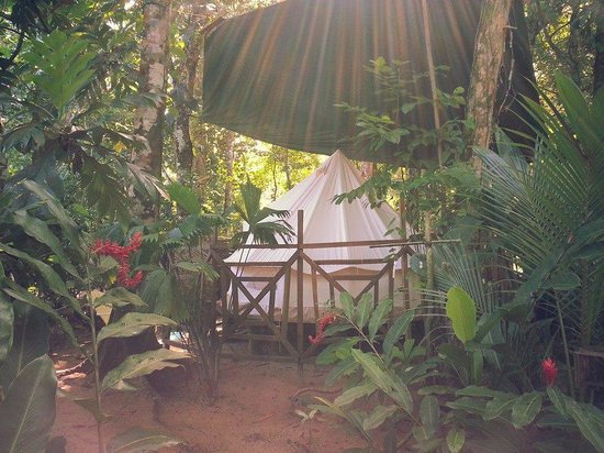 Palmar Beach Lodge : Glamping