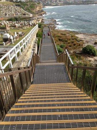 Bondi to Coogee Beach Coastal Walk: Stairs along the Coastal walk