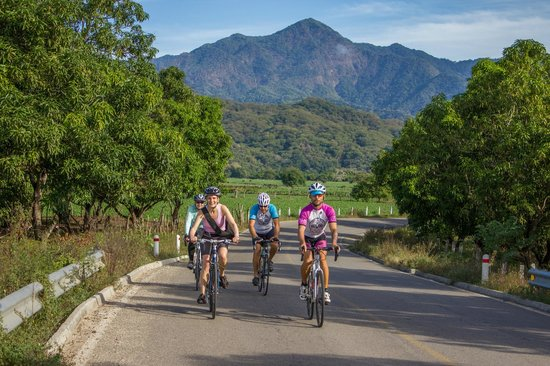Bici Bucerias : Farmland at the foot of the mountains
