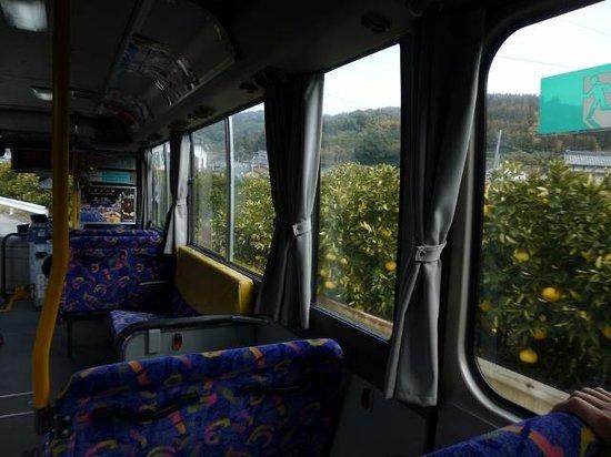Okoshiki Beach: 路線バスなら、ミカン山の間近を・・・