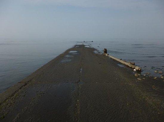 Okoshiki Beach: 海の中に消える(?)道