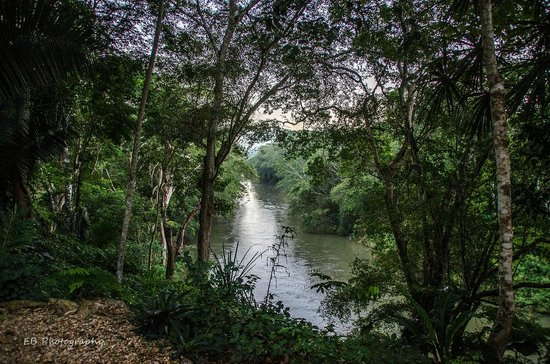 Mystic River Resort: The view