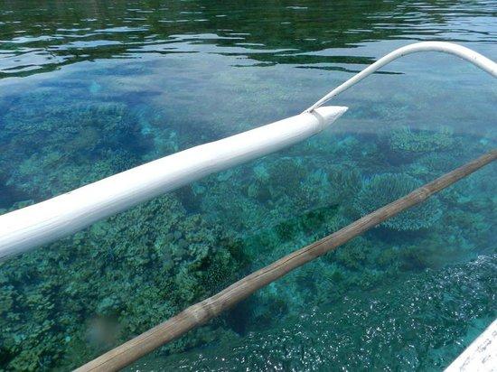 Mahaba Island: Snorkeling is unnecessary around Mahaba :)