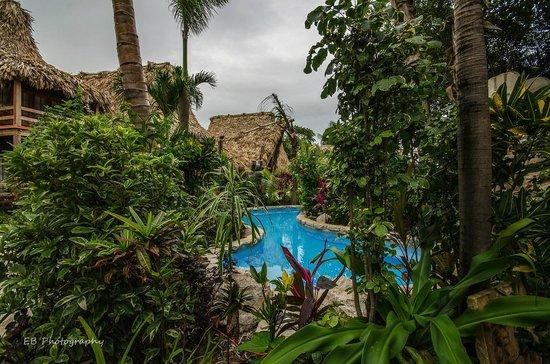 Ramon's Village Resort : Pool