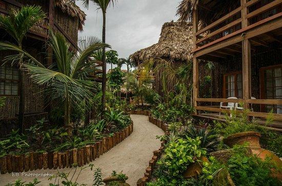 Ramon's Village Resort : The Grounds