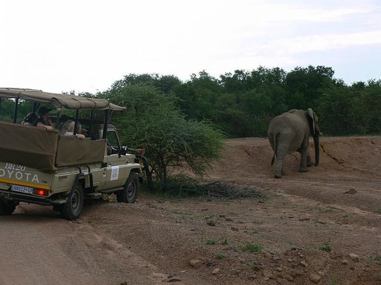 Pilanesberg Private Lodge : Safari vehicle
