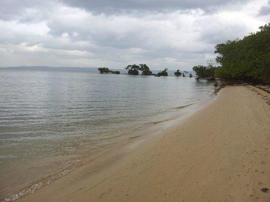 Coochiemudlo Island Beach Resort