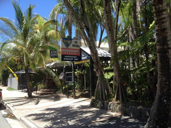 Noosa Backpackers Resort: The hostel...surrounded by a tropical garden