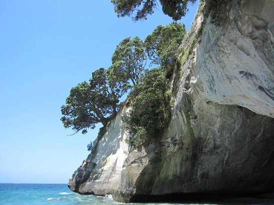 Pauanui Pines Motor Lodge: Cathedral Cove