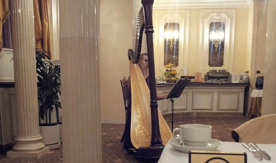 Golden Ring Hotel: A harpist played during breakfast