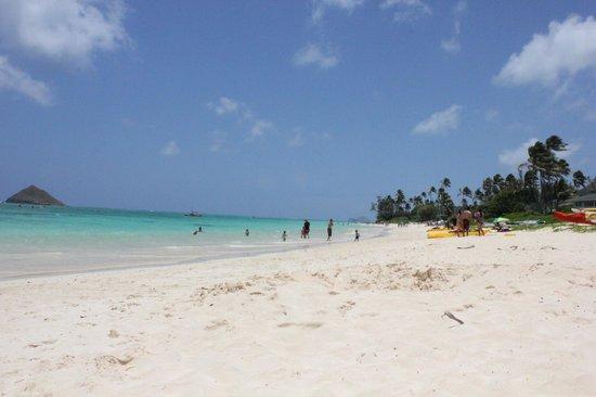 Lanikai Beach: Beach