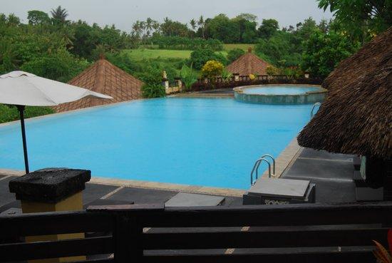 Bali Masari Villas & Spa: pool area