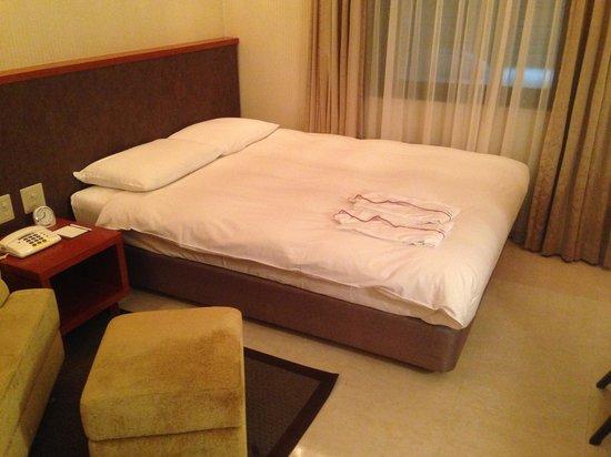 Nest Hotel Sapporo Odori: ホテル2
